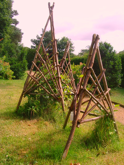 Coppice Designs Courses Trellis